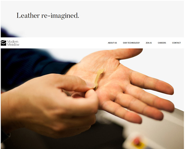 Leather re-imagined
