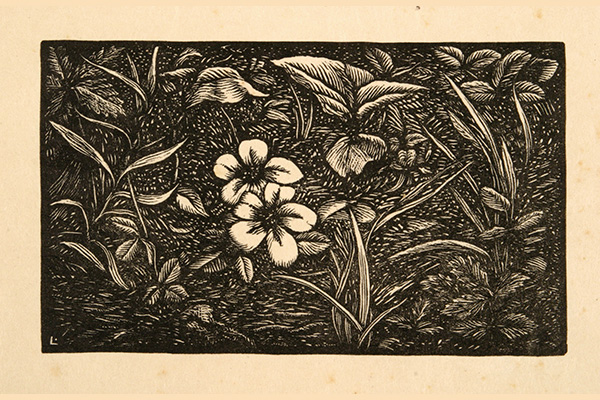 Elegy – Stanza 14 (Flowers), Woodcut Print on Paper by Julius J. Lankes (1926); Museum of Art and Archaeology, University of Missouri, Columbia